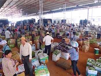 Haikou wholesale vegetable market