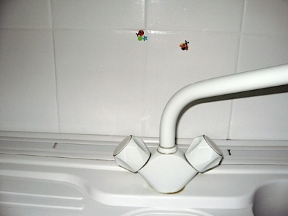 Plastic Lady Birds on White Tiles